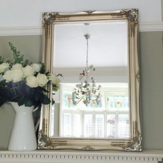 Champagne Silver Ornate Mirrors