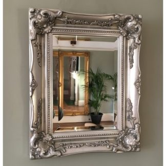 Silver Gilt Ornate Mirrors