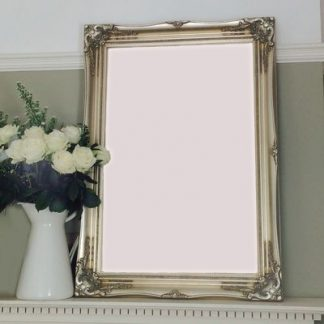 classic champagne silver picture frame 20x24