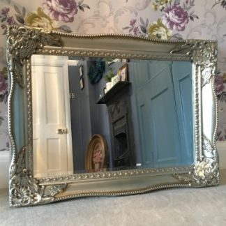 tuscany champagne silver mirror 20x30