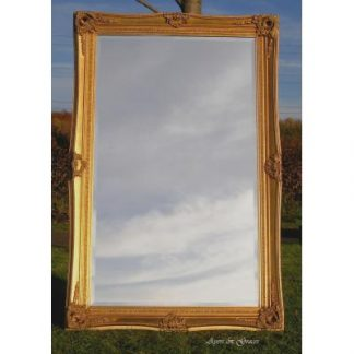 belle gold mirror 36x60