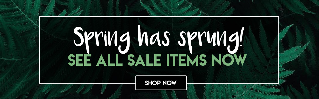 ayers and graces spring sale